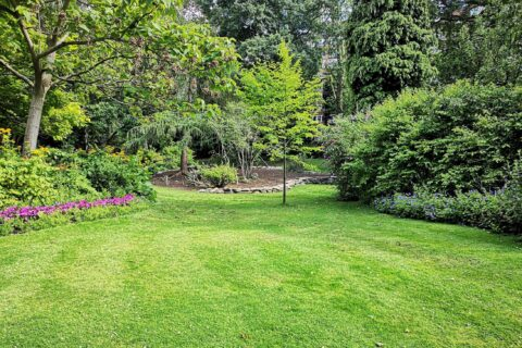 6 Tips To Achieve An Amazing Look For Your Garden